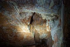 cova del gel